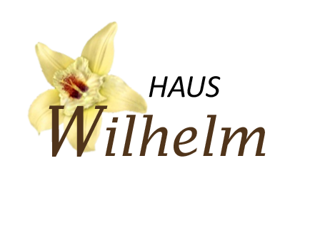 Haus Wilhelm Zimmer mit Frühstück direkt in Sölden